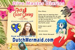 DiveMaster Diary