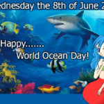 World Ocean Day & Cleaning up the beach