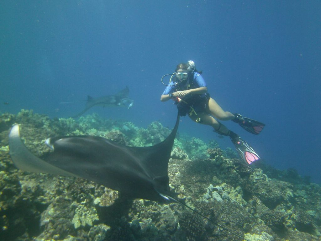 Diving with Manta Rays on the Big Island of Hawaii